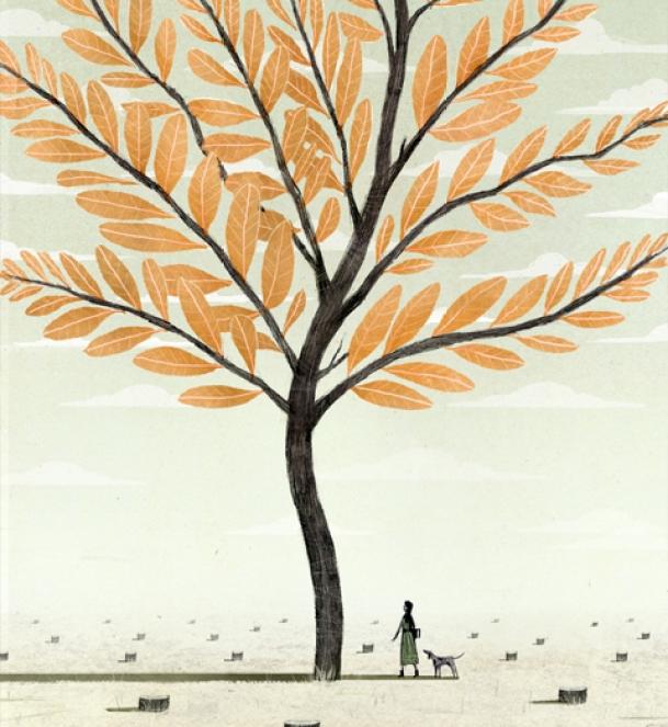 Musashino - Doppo Kunikida - ilustración de Dadu Shin
